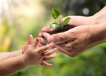 Kindersicherheit im Frühling oder Blumen im Garten, so 20zig Arten von Rosen, Tulpen und Narzissen…